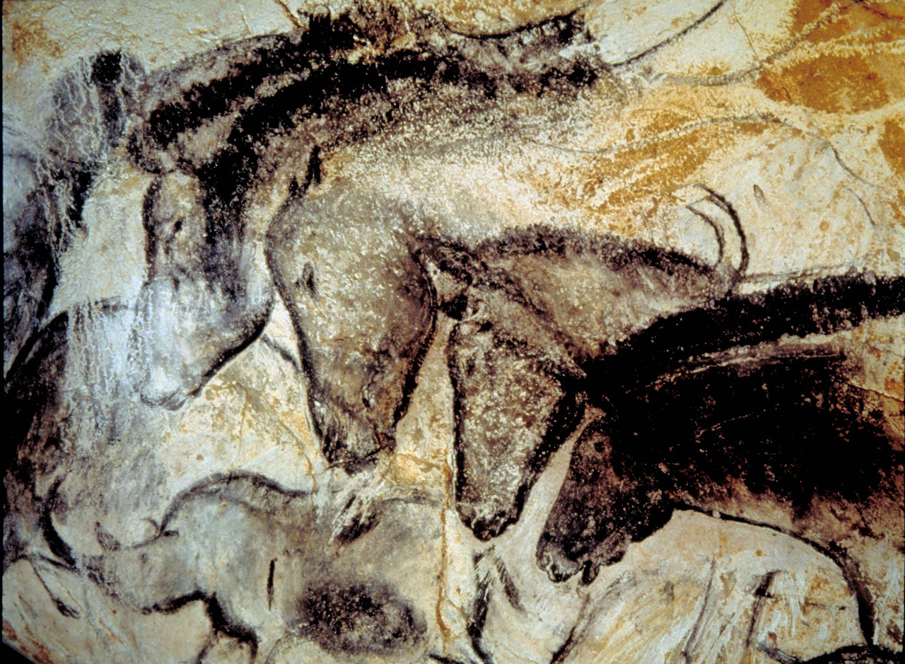 an analysis of kristine mccarthys cinematic aspects of cave art A correlational study of reading comprehension in spanish and english, kristine dianne nicholls pdf a correlation study between adult women substance abusers and a history of childhood incest , paula rutten freeland.